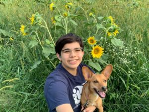 Young man and brown chiweenie posing in a sunflower field